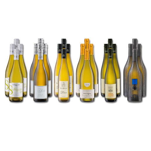 Weinsammlung - Die kleine Weißwein-Sammlung Winter 2021, 24 Flaschen Wenn Sie einen kleinen, gut gewählten Weinvorrat anlegen möchten, ist dies jetzt besonders leicht.