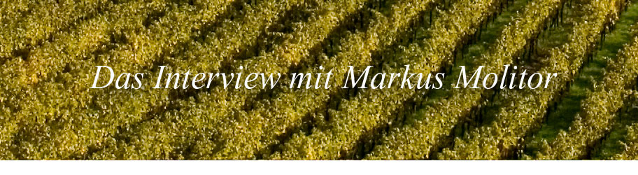 Interview mit Markus Molitor